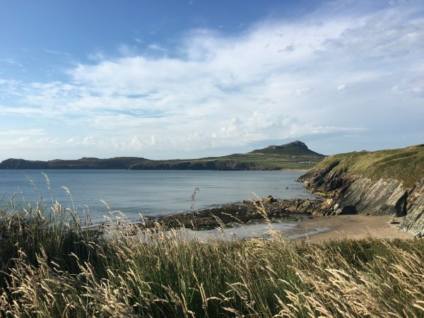whats on pembrokeshire 2019