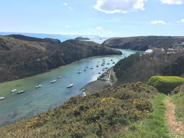 Boats in Solva St Davids Escapes