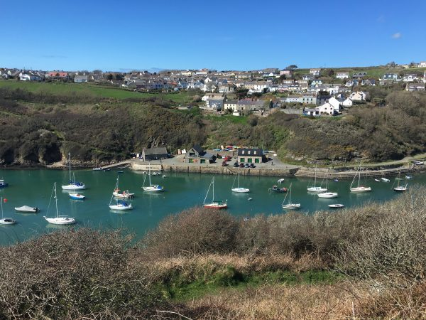 holiday in solva st davids escapes
