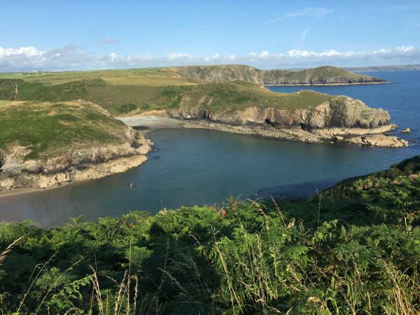 Coast Solva St Davids Escapes