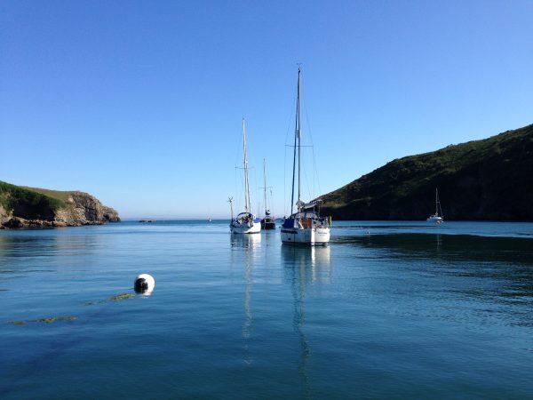 Solva Boats St Davids Escapes