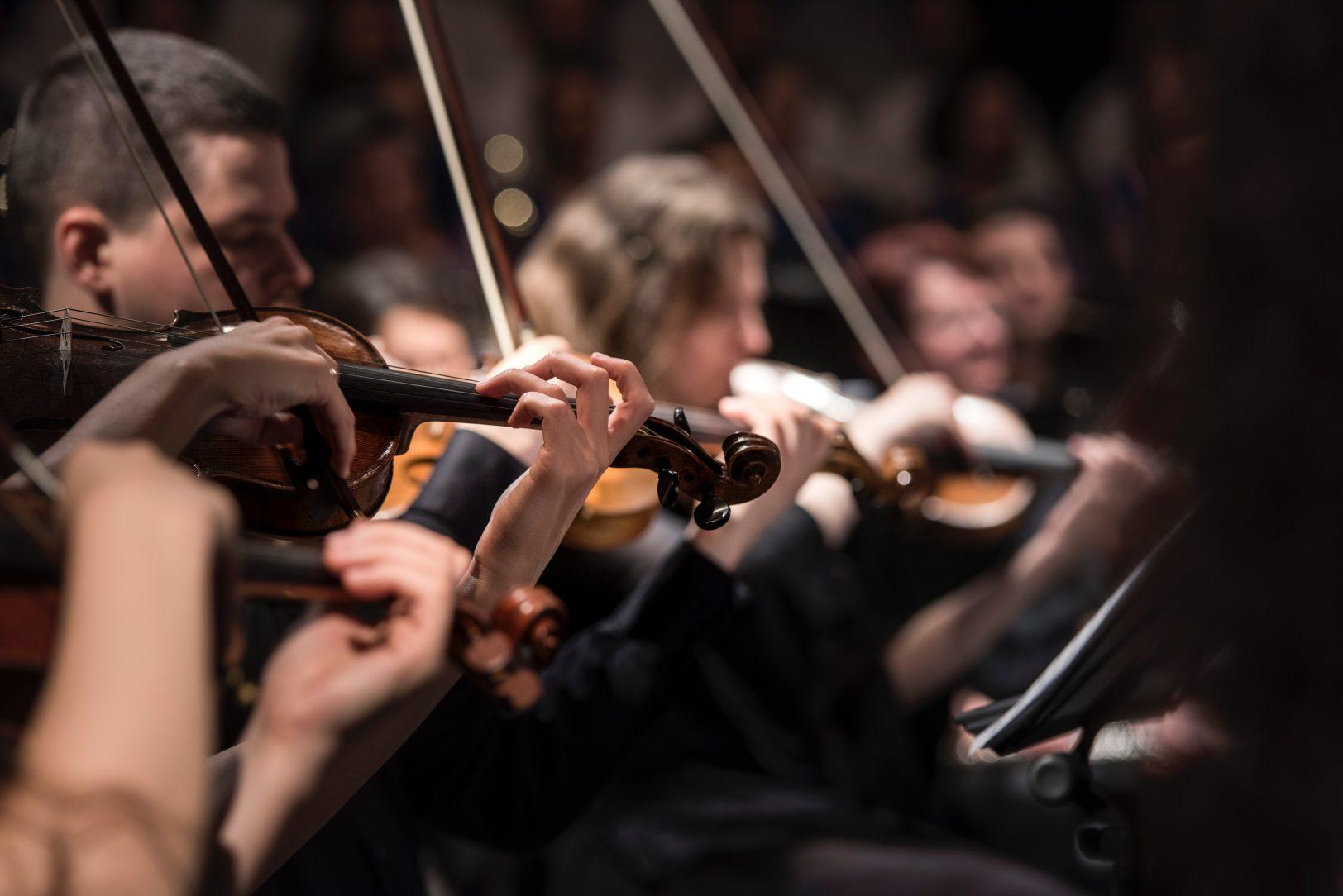 international music fest st davids escapes