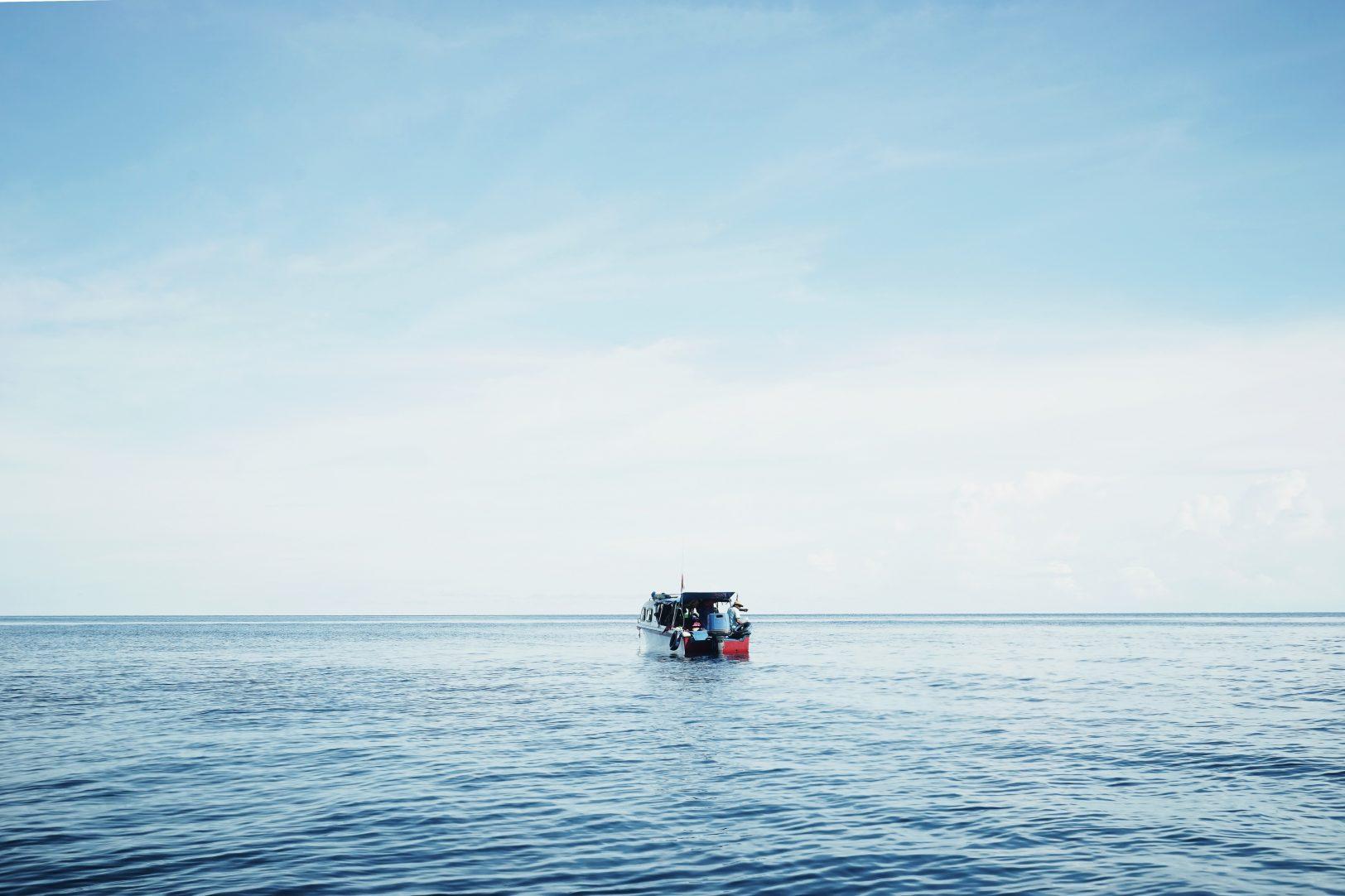 St Davids boat trips