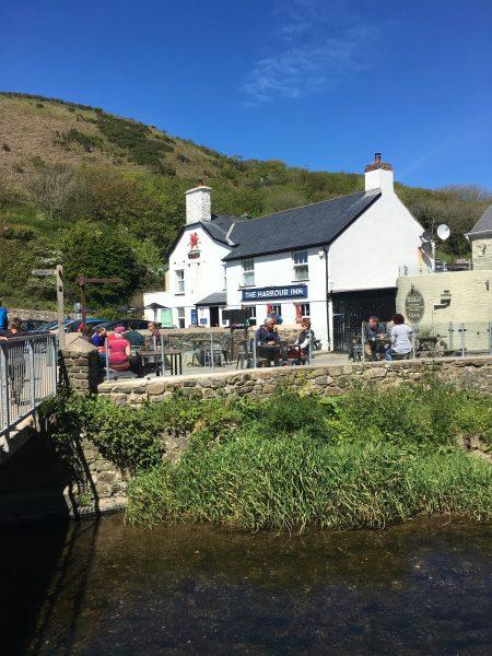 Harbour Inn, Solva, Dog-Friendly Pub