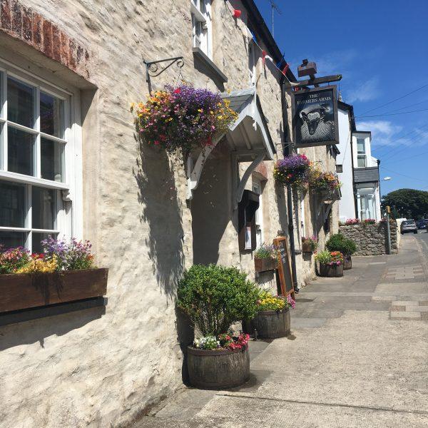Farmers Arms, St Davids - Dog-Friendly Pub