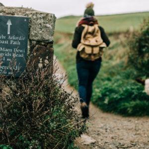 St Davids Escapes